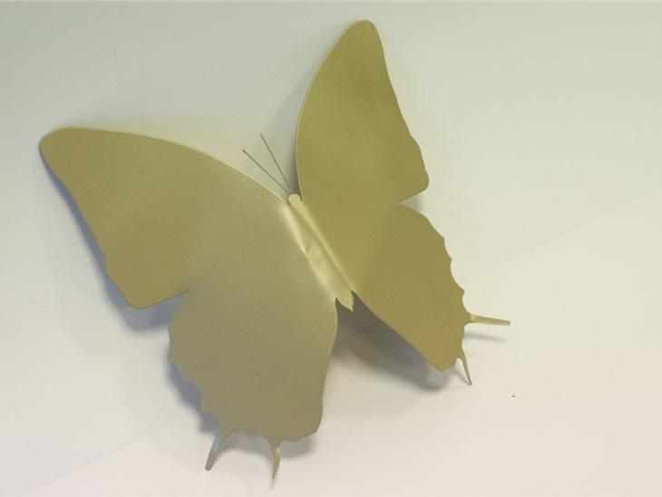 Farfalla da esposizione